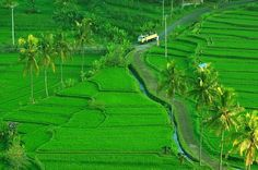 Warisan dunia, Subak-Bali