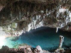 Flores: crocodile cave, Flores NTT Indonesia