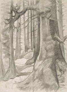 Friendly Cove, c. Emily Carr, Tom Thomson, Group Of Seven, National Art, Impressionist Paintings, Art For Art Sake, Modern Landscaping, Canadian Artists, Tree Art