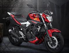 YIMM Mengeluarkan Surat Pemberitahuan Resmi dari Yamaha kepada Pemilik YZF-R25 dan MT25