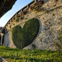 """Love is on the walls Bergamo, Italy ~Even Top Biz Officials can shine by revealing precarious emotions! Show it off by sprucing your captions with some smiley faces thrown in. Using emoticons on Facebook increases comments by 33%...  Enjoy 31 Tips for Getting Engagement on Facebook + Opportunity Newsletter here: http://www.themarketingplatform.com/lnchL6303a9f6ad36d1f065ed9462b2b7c09 *Where you can turn Any Website into Top $$$ with Your Own Marketing Campaign via All in (1 click)... Wow"