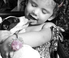 El poder terapeutico de las Mascotas
