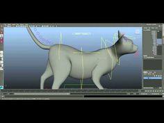 Cat Rig - rigs para empresas, promocionales,  publicidad, arquitectura, diseño industrial empresa mexicana