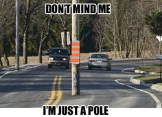 """""""Go home pole, you're drunk."""""""
