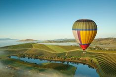 Global Ballooning in the Yarra Valley. All the information about your morning balloon ride, what to wear when you go ballooning and what to expect to see on your Yarra Valley balloon flight. Hot air balloon rides at dawn. Sauvignon Blanc, Cabernet Sauvignon, Amazing Destinations, Travel Destinations, Domaine Chandon, City Of Adelaide, Sydney, Air Balloon Rides, Yarra Valley