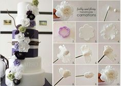 Carnations Picture Tutorial