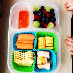 Make your own lunchables! Butterfly crackers, honey turkey, cheddar cheese flowers, carrot sticks, green grapes/blueberries/raspberries, orange Jell-o racecar. Oh, and Harper's curious hands. #foodforharper  Please follow me on www.facebook.com/FoodForHarper for more ideas and information!