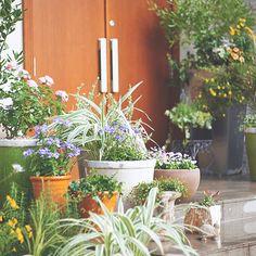 手間をかけず、気軽に自分好みの庭づくりができる