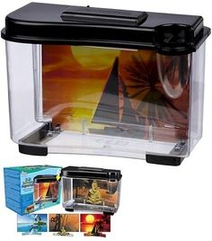 Water World 3D Serenity Aquarium Pet Supplies : Too small and cold for a betta (or goldfish) but would be great for a ghost shrimp or a colorful snail! Better to get a larger betta tank and decorate it in a fun theme. Remember, bettas need a 2+ gallon tank and a heater! Go here for some great betta housing ideas: http://www.pinterest.com/familyshopping0/fish-great-betta-tanks/