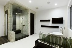 Colgate project-Modern bathroom