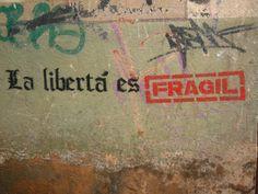 fragil y sin garantia  :c