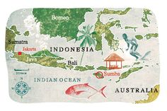 Illustrated map of Indonesia by Lee Woodgate for Condé Nast Traveller.