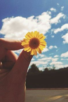 Girl Photography Poses, Tumblr Photography, Amazing Photography, Nature Photography, Hand Flowers, Love Flowers, Beautiful Flowers, Beautiful Pictures, Flower Aesthetic