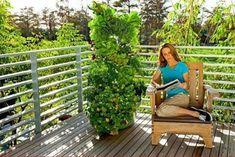 The+Juice+Plus+Tower+Garden #towergardenjuiceplus