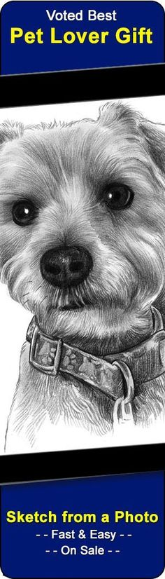 We drawn/paint portraits of pets from your photo.  Awesome gift for pet lovers and a popular pet memorial too.