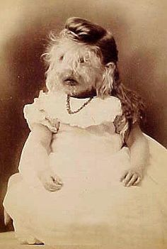 "Carte de visite of unknown ""dog-faced"" girl."