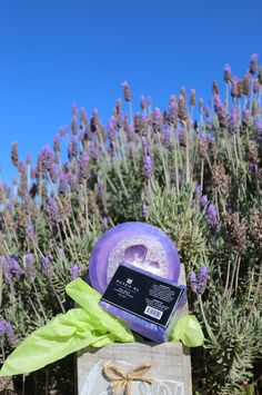 Lavender Fields Loofah Soaps