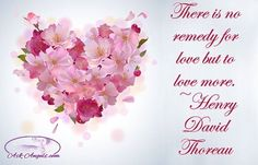 There is no remedy for love but to love more. ~Henry David Thoreau