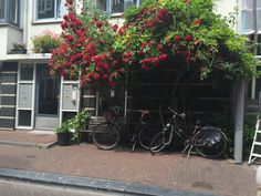 lifedutch#amsterdam#biclycle#