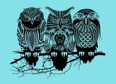 three wise owls <3