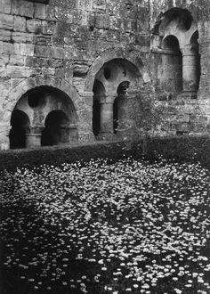 L'Abbaye du Thoronet, le cloître cistercien ( XI et XIIeme), photo 1980 par Jean Dieuzaide