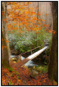 Western North Carolina Photography opportunities