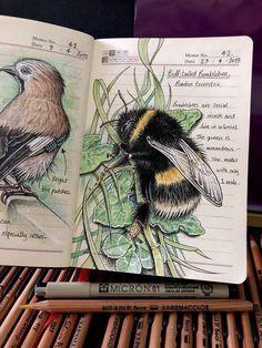 Gcse Art Sketchbook, Watercolor Sketchbook, Sketchbooks, Kunstjournal Inspiration, Sketchbook Inspiration, Nature Journal, Art Graphique, Art Sketches, Collages