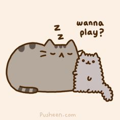 click to animate.  I think I am Pusheen and the kitten is my cat, Smokey!  She always wake me up.