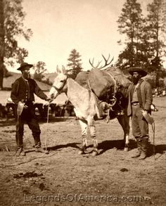 Pack mule, 1871 Old West Photos, Western Photo, Hunting Pictures, Cowboys And Indians, Le Far West, Beautiful Horses, Old Pictures, Wild West, Cow Boys