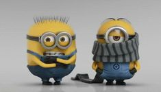 Find GIFs with the latest and newest hashtags! Search, discover and share your favorite Minions GIFs. The best GIFs are on GIPHY. Gif Minion, Minion Humour, Cute Minions, Funny Minion, Gif Animé, Animated Gif, Cold Gif, Balrog Street Fighter, Minion Mayhem