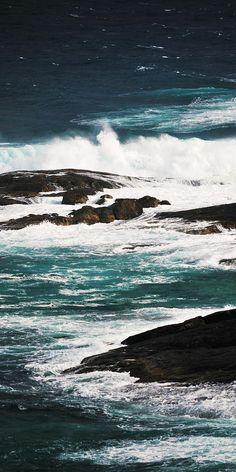 ✯ Wild Seas