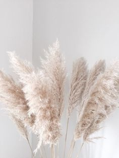 DIY - wedding decoration with pampas grass! - DIY – wedding decoration with pampas grass! Deco Floral, Floral Design, Flor Iphone Wallpaper, Screen Wallpaper, Phone Wallpapers, Wallpaper Quotes, Diy Wedding Decorations, Wedding Ideas, Boquette Wedding