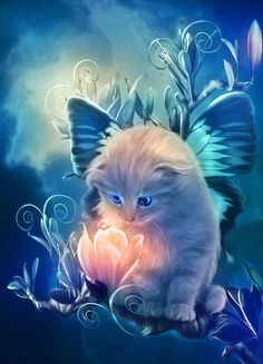 fairy kitty by *MariLucia on deviantART