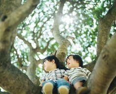 写真家:濱田英明 http://hideakihamada.com/