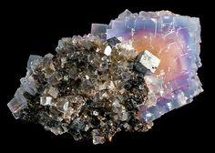 Fluorite with Galena on Sphalerite matrix  Minerva #1 Mine, Hardin County, Illinois