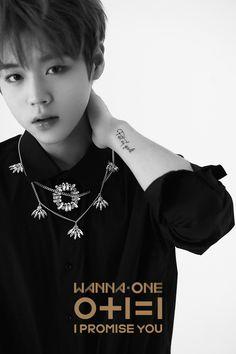 "Wanna-One - Park Jihoon - ""0+1=1 (I PROMISE YOU)"" Idol, Golden Age, Lee Daehwi, Lee Min Ho, Jinyoung, Fandom, Korean Boy Bands, Korean Guys, I Promise You"