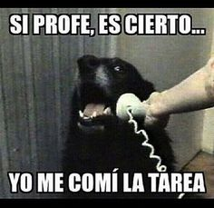 """Top LOL Memes En Espanol Memes That will make you laugh and funny for whole day.So scroll down and read out these """"Top LOL Memes En Espanol"""" and i'm sure these """"Top LOL Memes En Espanol"""" will make you laugh out loud. Cool Memes, New Memes, Funny Quotes, Funny Memes, Hilarious, Memes Humor, Comic Foto, Le Dab, Whatsapp Videos"""