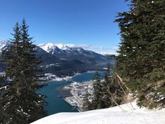 Mount Roberts Trail, Juneau: See 385 reviews, articles, and 223 photos of Mount Roberts Trail, ranked No.7 on TripAdvisor among 84 attractions in Juneau.
