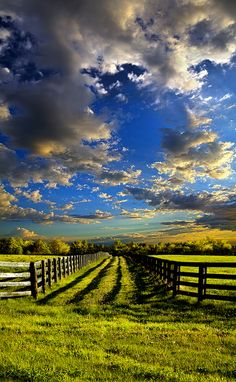 The Horizon series by Phil Koch, a two year photographic exploration of the Wisconsin landscape.