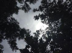 The sun above us by lnp.deviantart.com on @deviantART