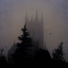 The dark castle where the Dark Master lives. Dracula, Imagenes Dark, Photo Chateau, Dark Castle, Gothic Castle, Beast's Castle, Arte Obscura, Gothic Aesthetic, Dark Fantasy