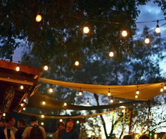 Best College Bars: Casey Moore's Oyster House, Arizona State