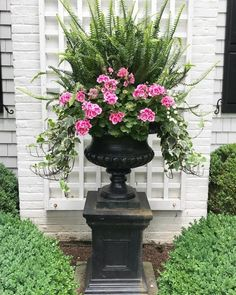76 Unique Container Gardening Ideas for Flower You Must Have