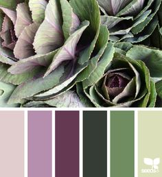 Produced Tones - http://design-seeds.com/index.php/home/entry/produced-tones3