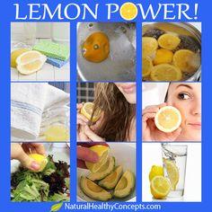 12 Natural Lemon Uses! Check out our Lemon Cookie Sugar Scrub--www.scrubbarusa.com