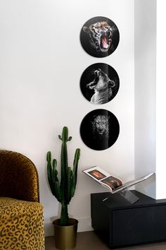 With these circles you give every wall a playful new look. Use your own photos and bring your best memories to life with your own photos on forex, plexiglass or (dibond) aluminum. Welcome Back Home, Collage, Interior Stylist, Piece Of Cakes, Single Image, Cool Tools, Best Memories, First Photo, Tool Design