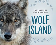 This nonfiction picture book is illustrated with stunning wildlife photographs and tells the story of a lone wolf who swims to an island in the Great Bear Rainforest. Different Types Of Animals, Award Winning Photography, Rocky Shore, New Children's Books, Fiction And Nonfiction, Lone Wolf, Kids Writing, Book Publishing, Book Lists