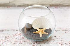 Seashell Terrarium bathroom decor, i would add a touch of mint