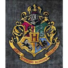 Eliza Wayland is Jace's little sister, a shadow hunter and a witch. She goes to Ilvermorny Academy to learn control over her powers and fights demons when she is in and out of school. With a war brewing in Britain, Dumbledore reaches out to the Shadow hunters for help after hearing that Voldemor