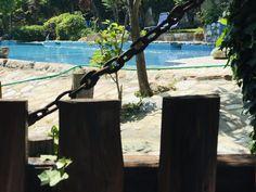 Booking.com: Damouchari Hotel , Damouchari, Grèce - 28 Commentaires clients . Réservez votre hôtel dès maintenant!
